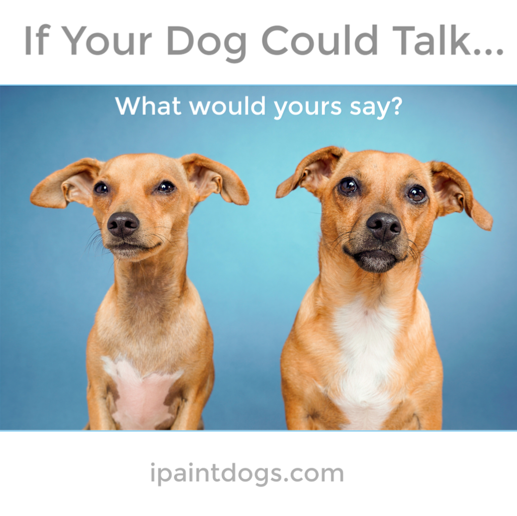 If your dog could talk, what would it say?  ipaintdogs.com