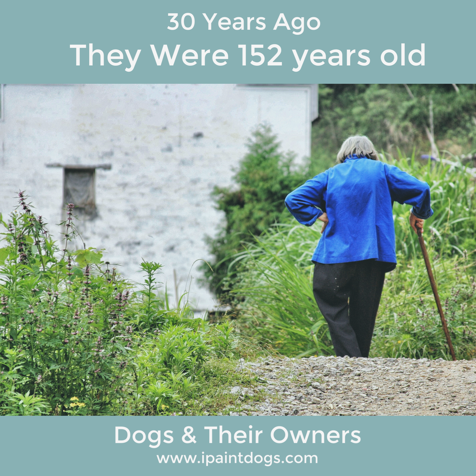 Dogs & Their Owners ageing together by ipaintdogs.com
