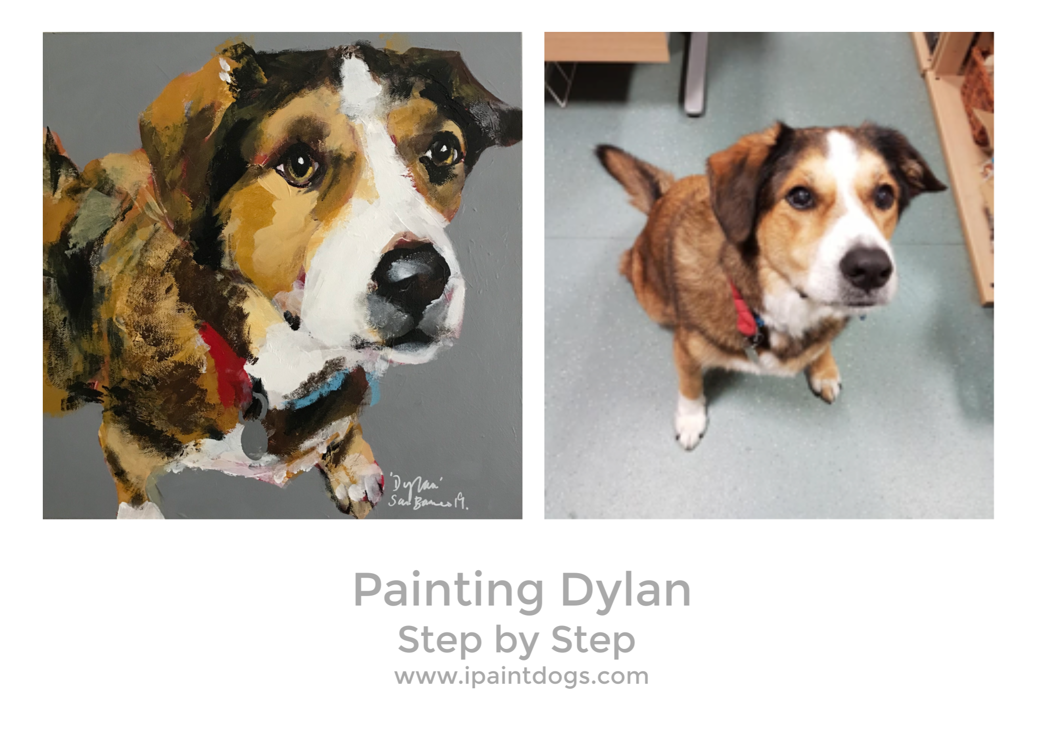 Painting Dylan, Step by Step by Samantha Barnes, ipaintdogs.com