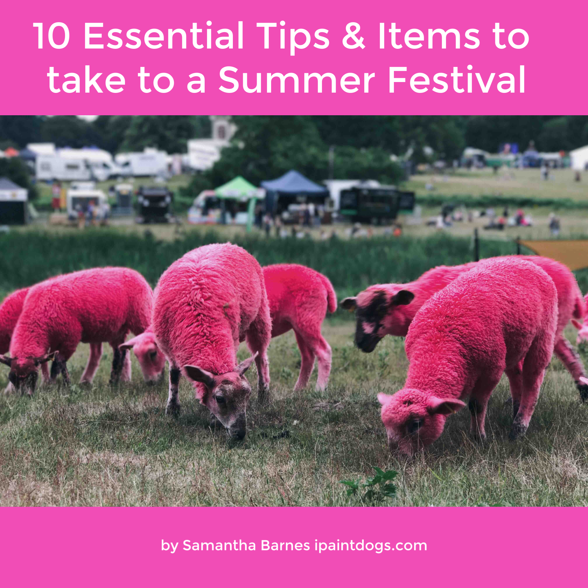 10 Essential Tips & Items to take to a Summer Festival, by Samantha Barnes, ipaintdogs.com