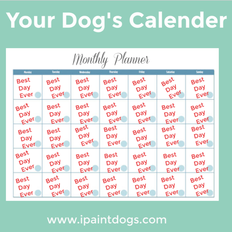 Your Dog's Calender, ipaintdogs.com