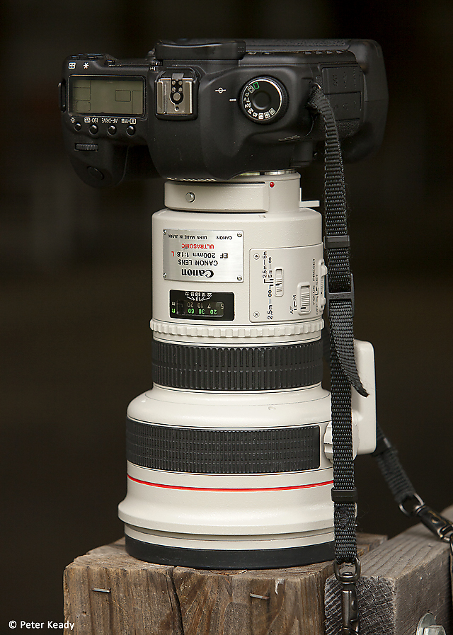 The legendary Canon 200/1.8