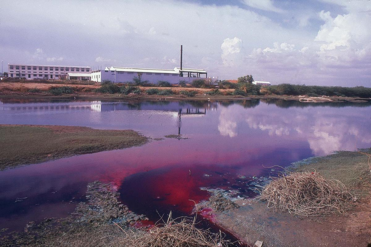"""Creator// HK RAJASEKAR/INDIA TODAY/GETTY  The rivers around Tirupur are often red or purple with runoff from nearby factories"""" // Newsweek"""