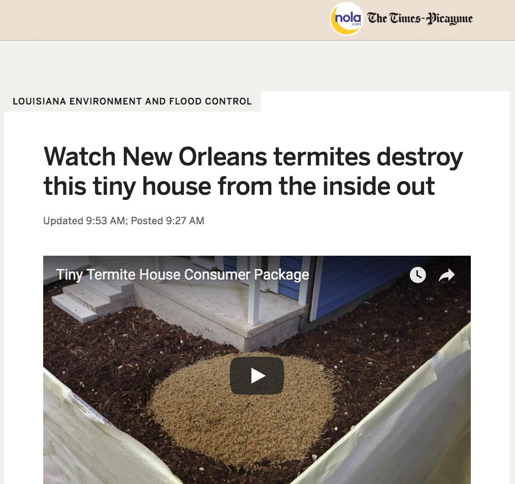 Termitestory.png