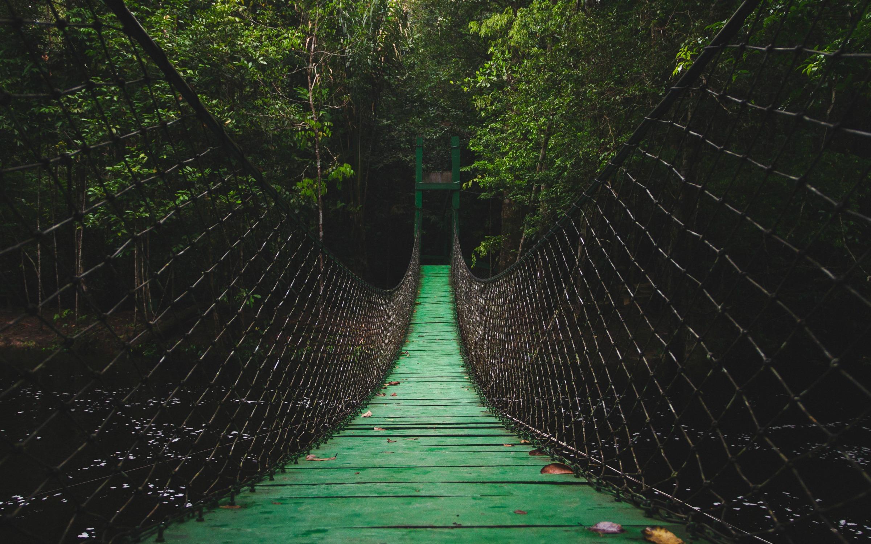 adventure-bridge.jpg