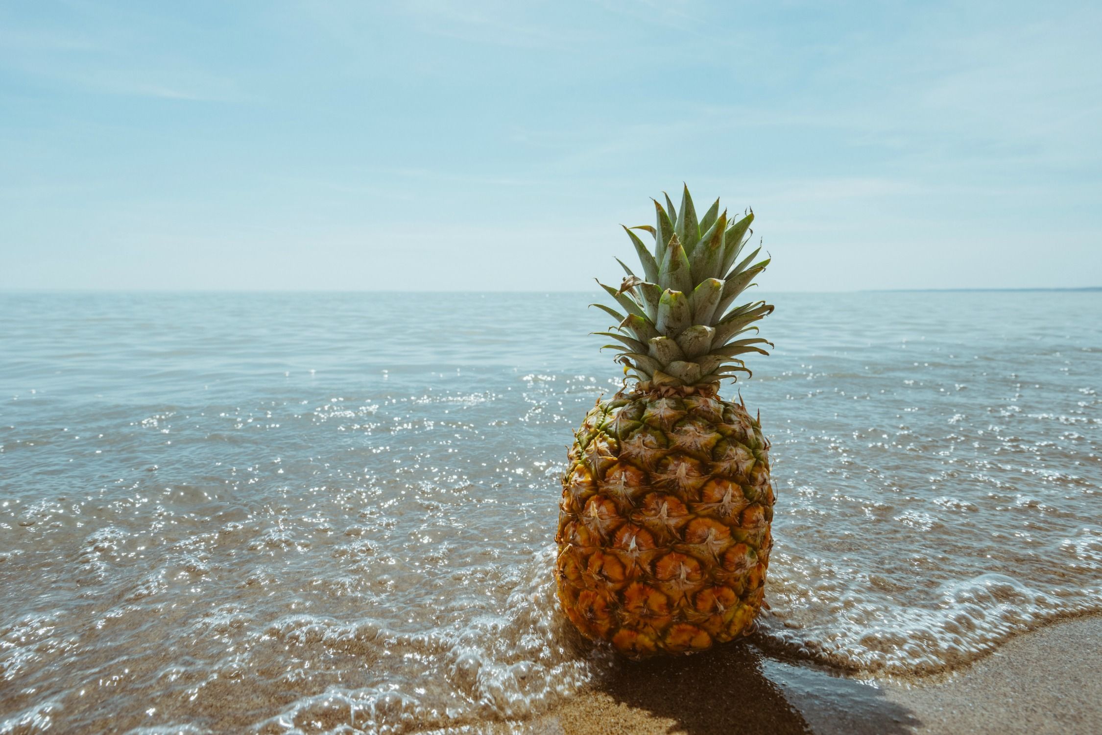 item-pineapple.jpg