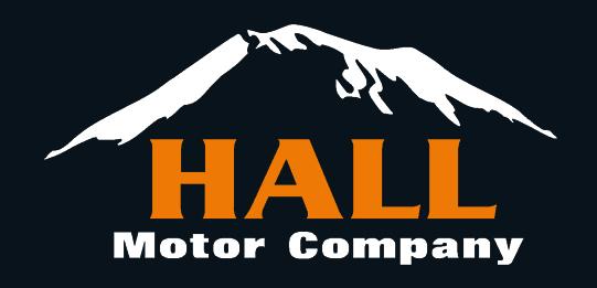hallmotor_logo.jpg