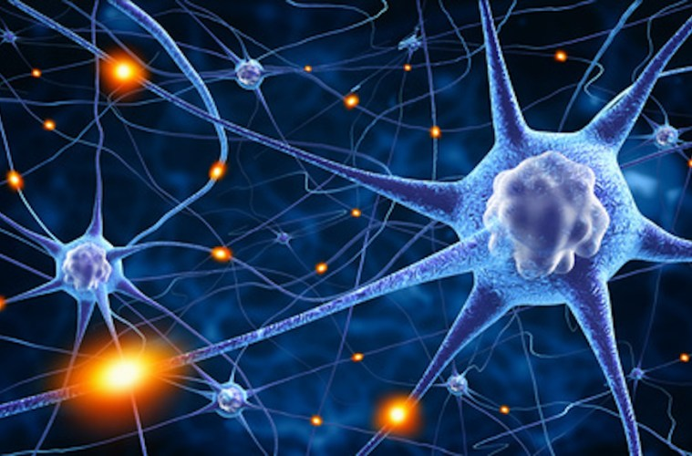 Multiple Sclerosis -