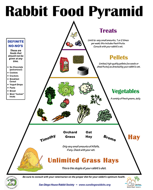 The rabbit food pyramid
