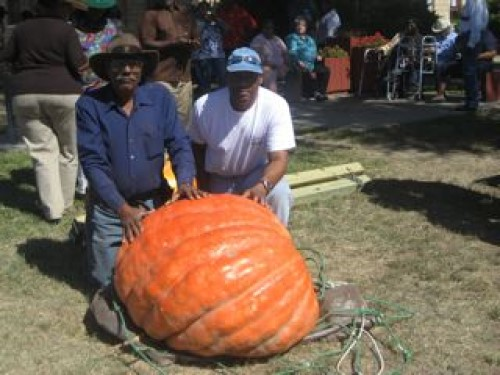 Gary and Robert Alexander grew the Great Pumpkin