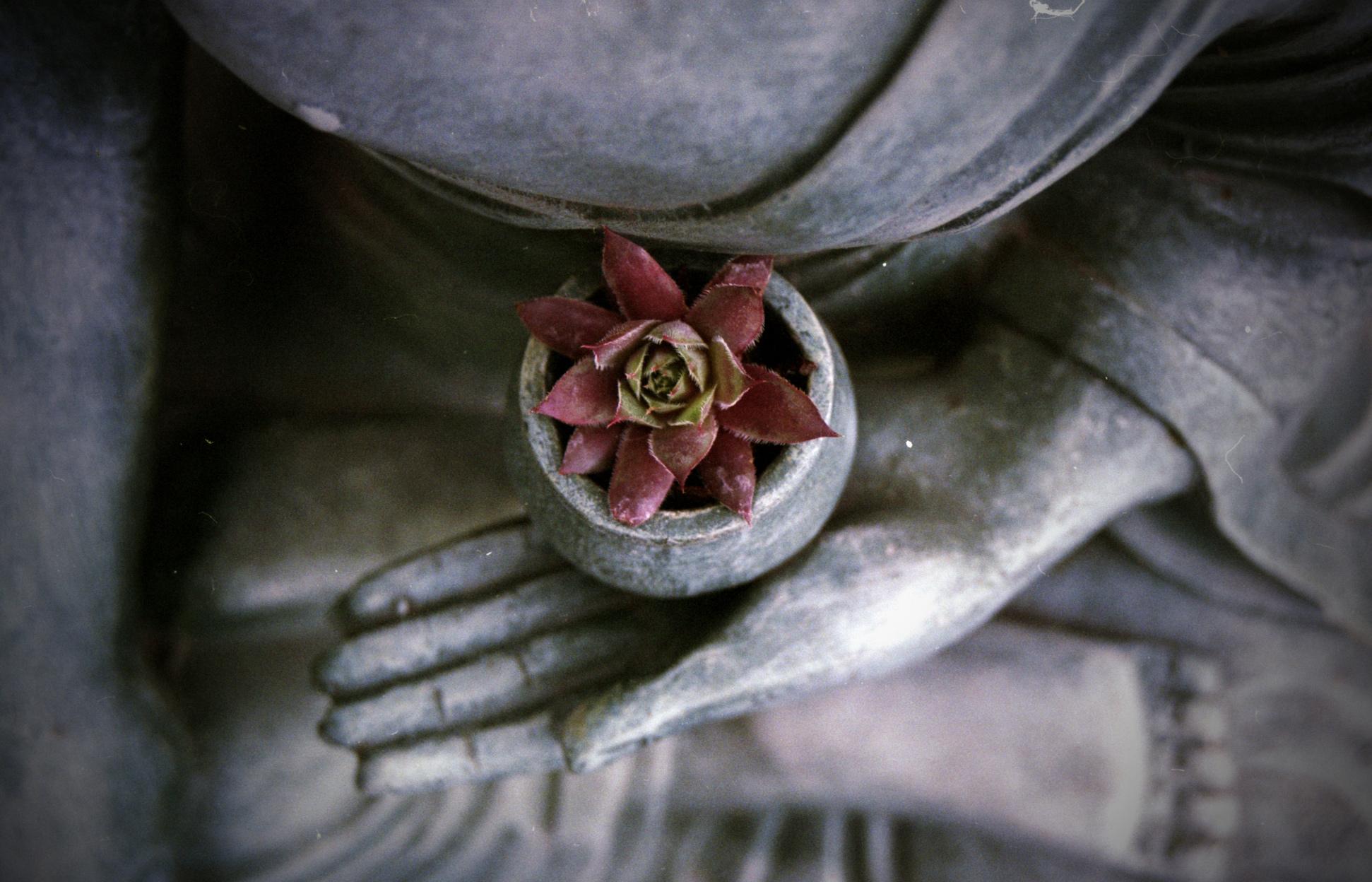 35 body,-mind,-spirit-yoga.jpg
