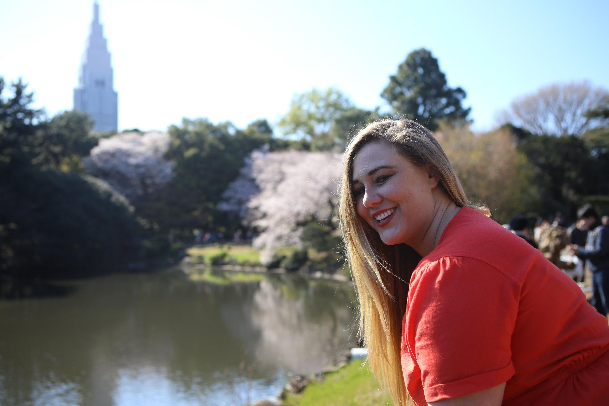 Tokyo Shinjinku Gardens Cherry Blossoms.jpg