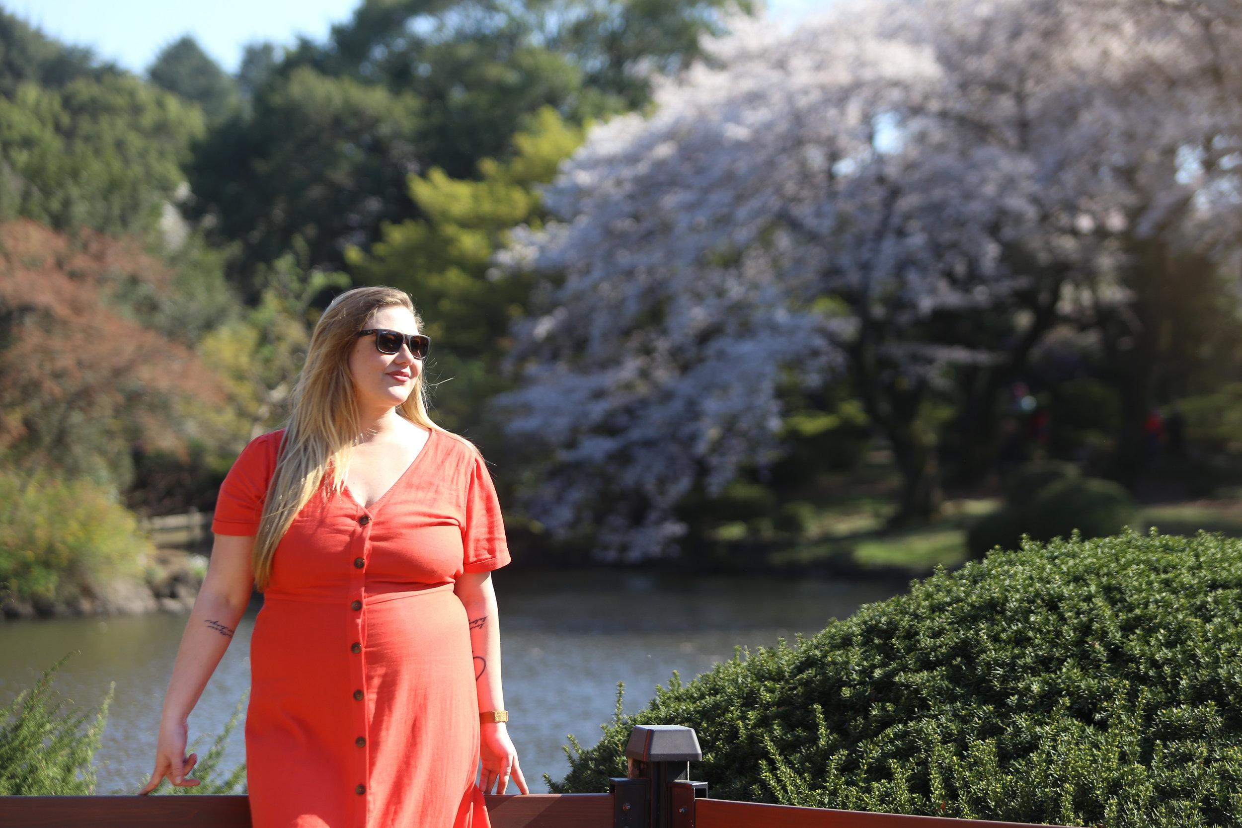 Shinjinku Gyoen Tokyo Japan Cherry Blossom.jpg