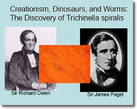 Discovery of  Trichinella spiralis