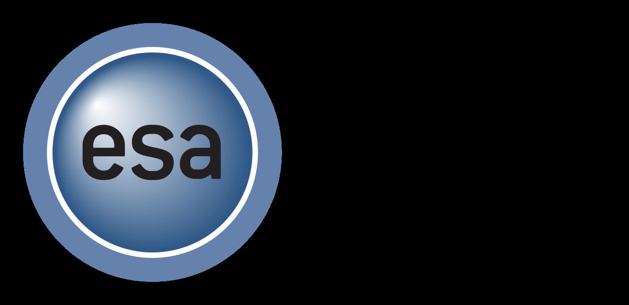 Entertainment Software Association Foundation Logo