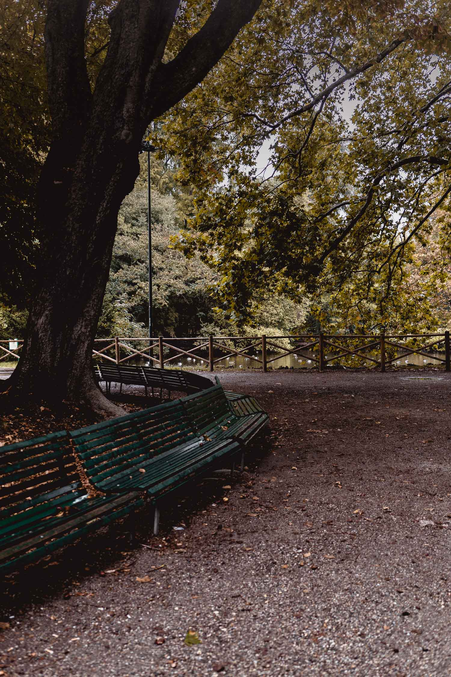 Milan-02085.jpg