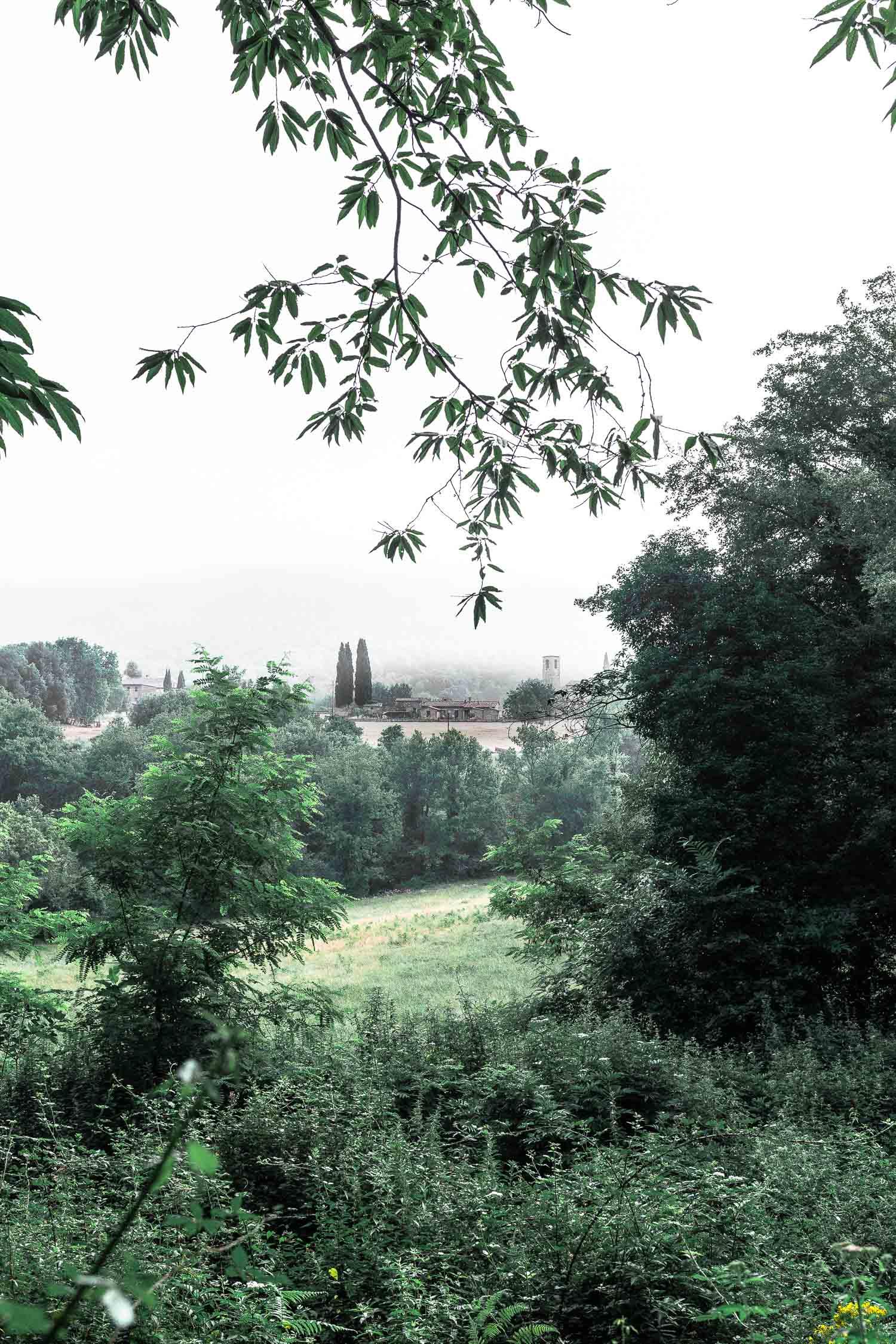 Tuscany-landscape-4271.jpg