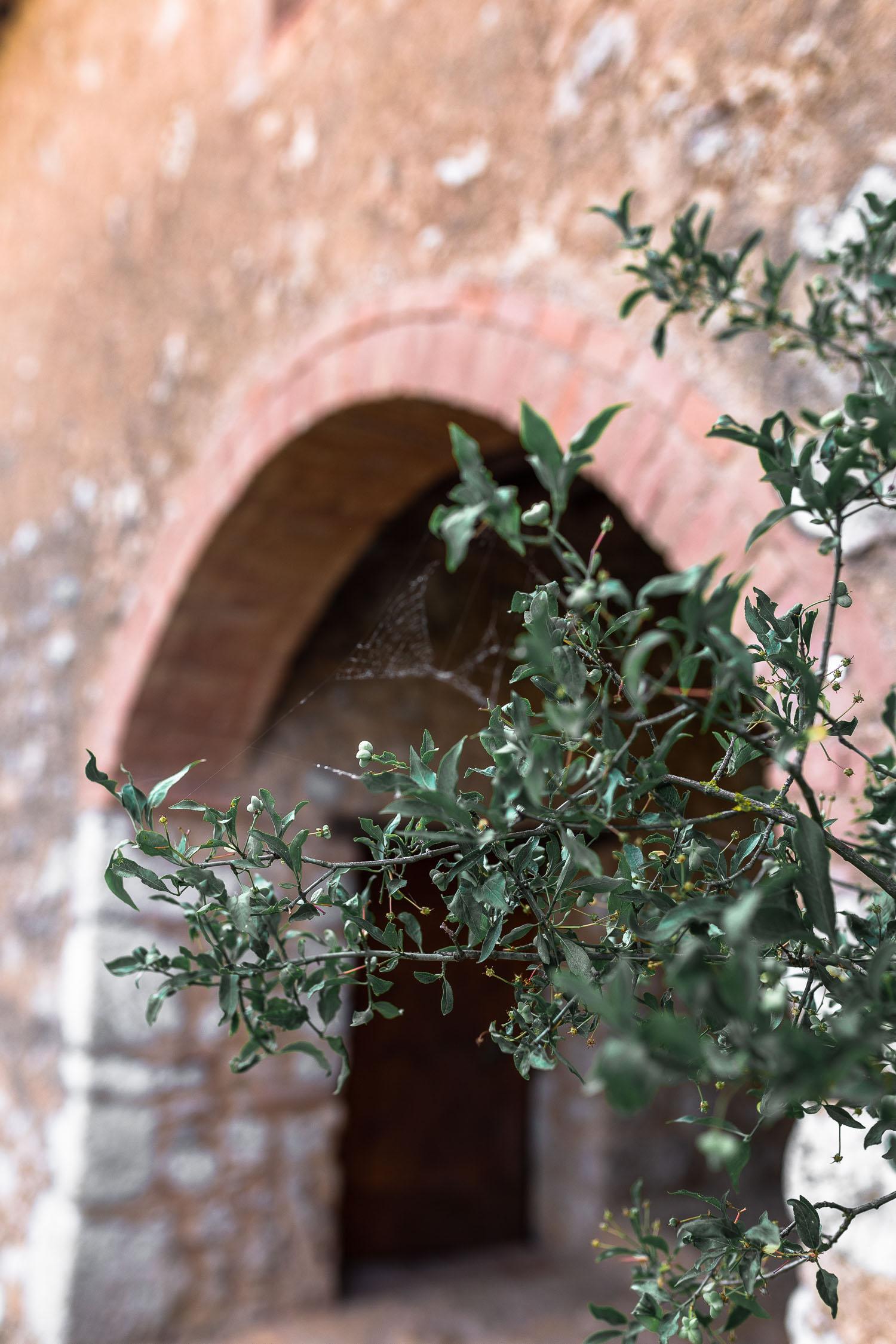 Tuscany-Simignano-4090.jpg