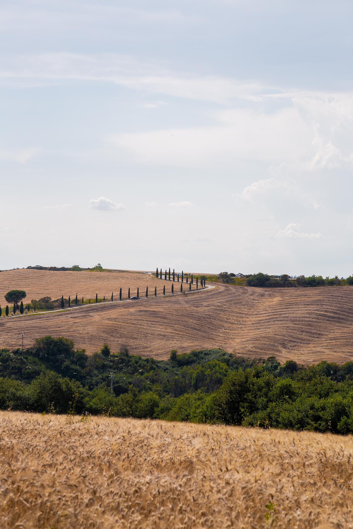 Tuscany-countryside-5252.jpg