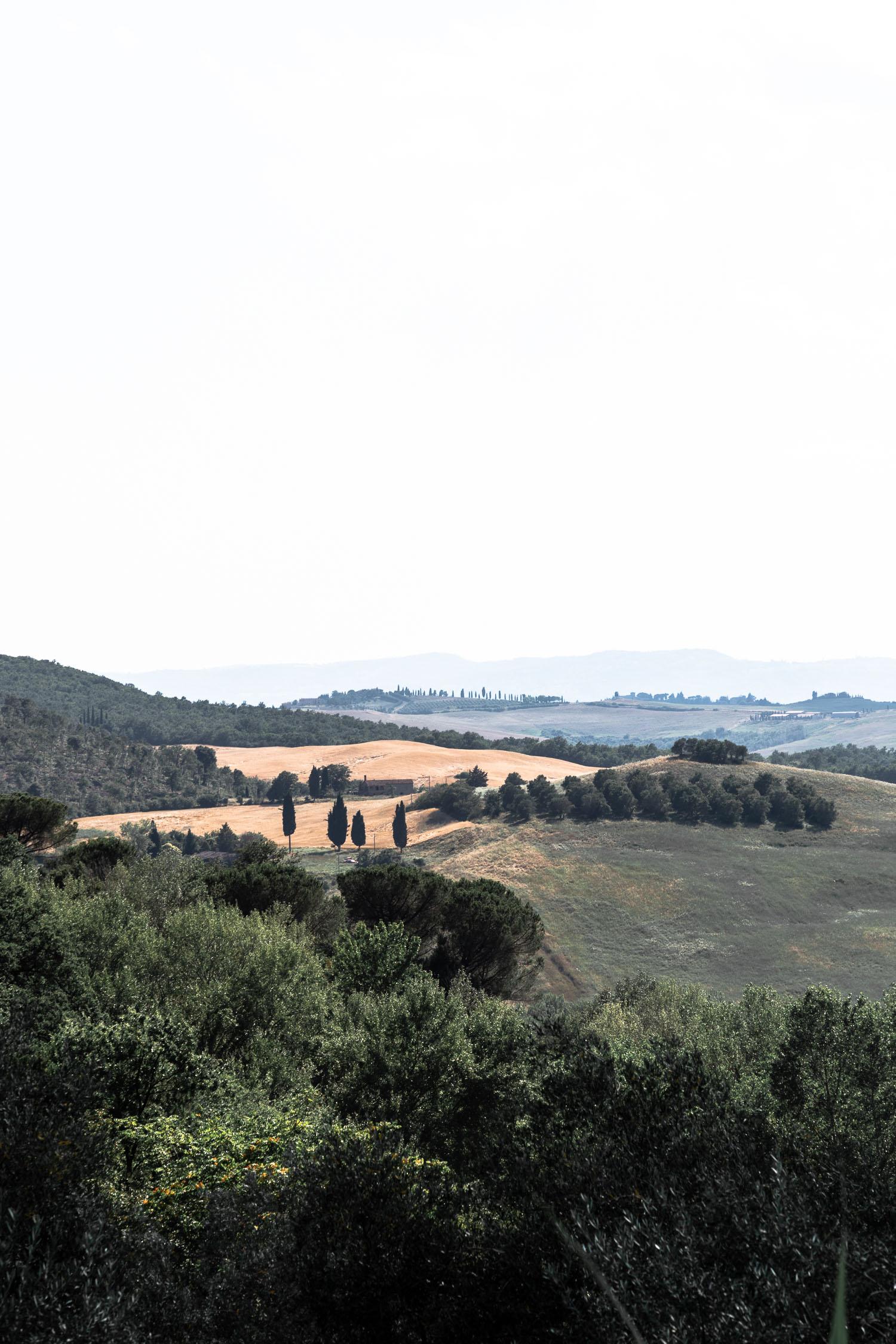 Tuscany-countryside-5415.jpg