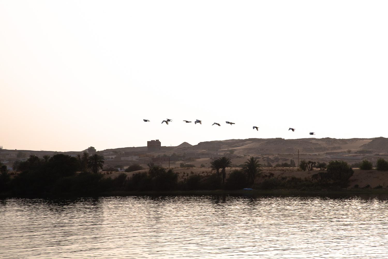 Egypt-0753.jpg