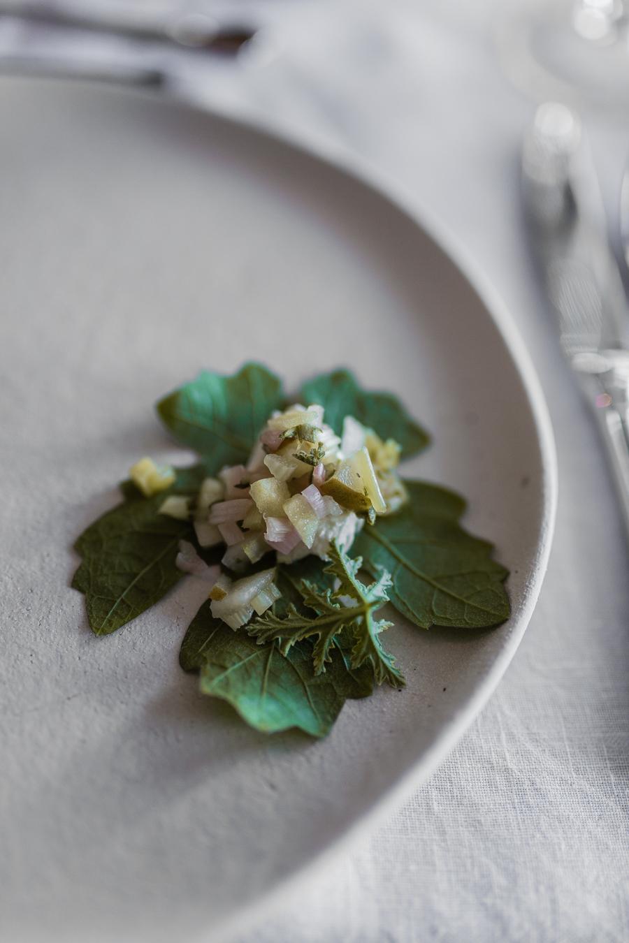 Sinnika_Harms_Adelaster_Food_Textures_IMG_2046.jpg