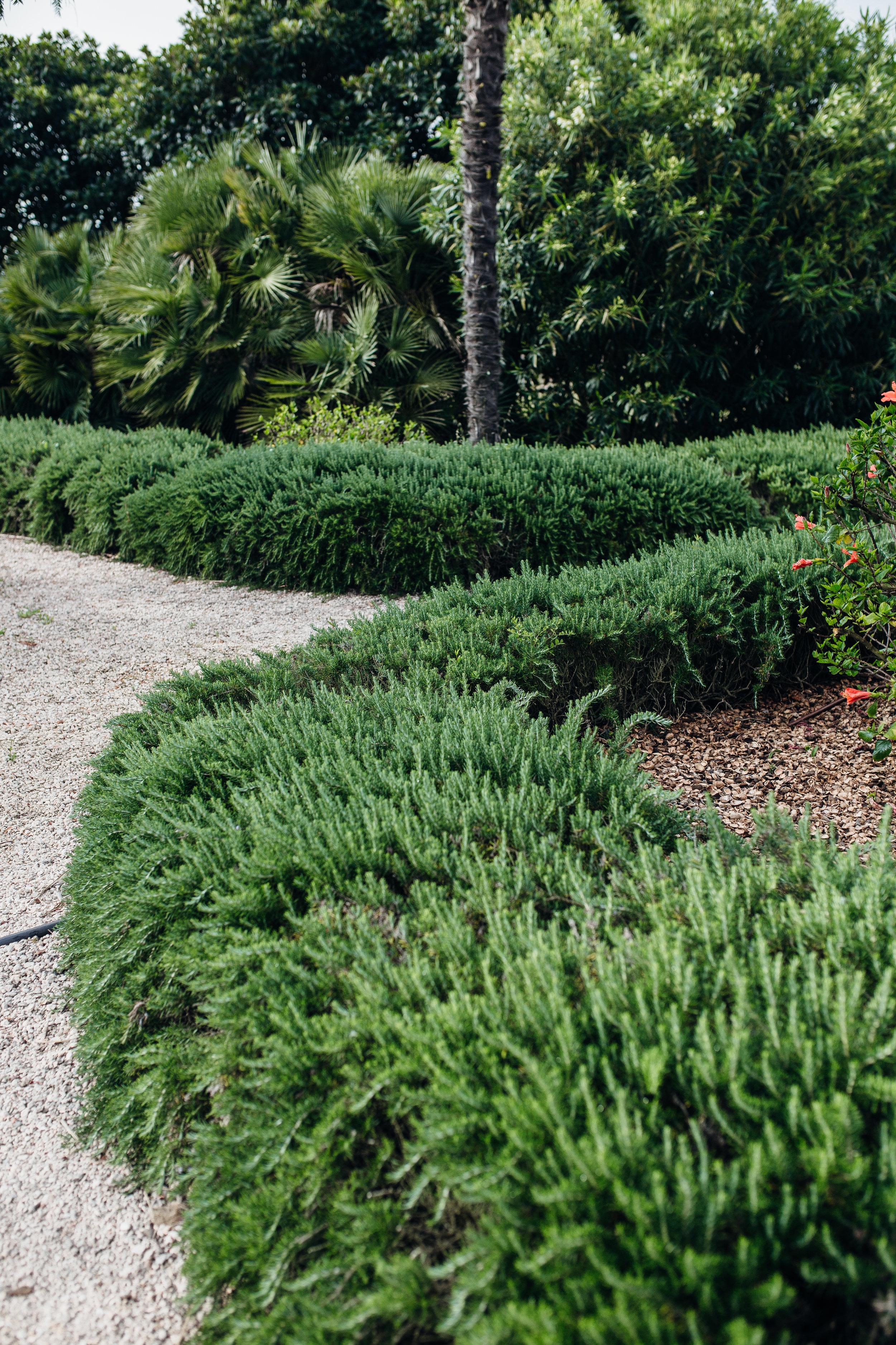 Cal-Reiet_Garden_Detail_MALLORCA_IMG_1333.jpg