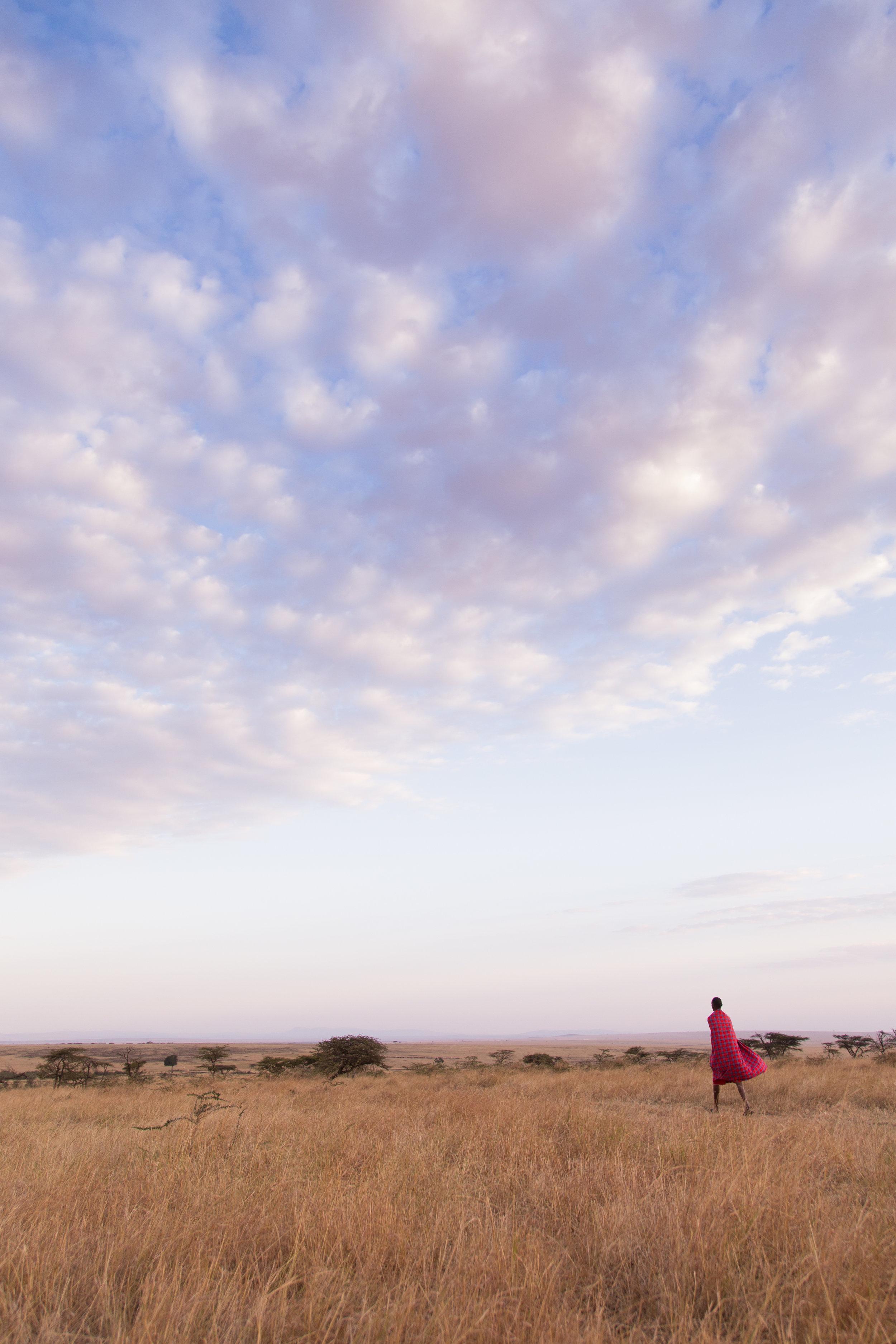 Maasai man walking on the savannah at sunset in Kenya