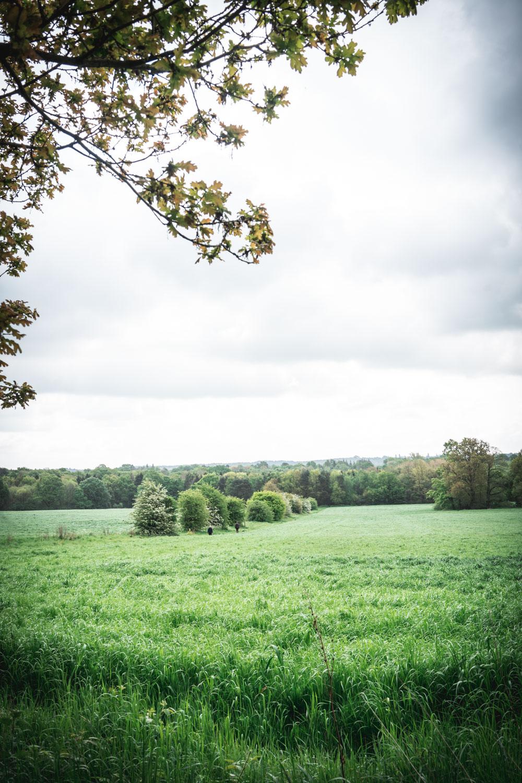 Kentish-countryside-06326.jpg