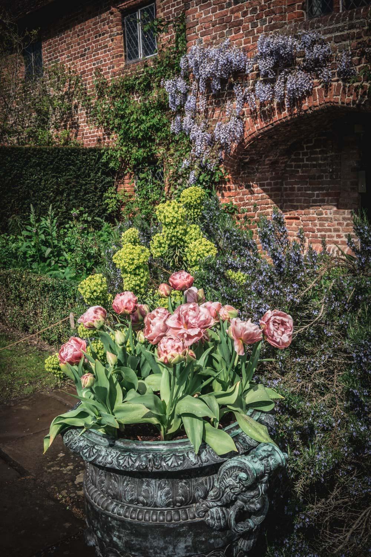 Sissinghurst-Castle-garden-entrance-pink-tulips.jpg