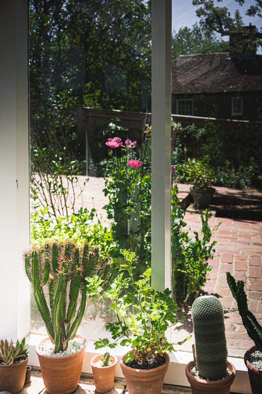 Monk's house-cacti.jpg