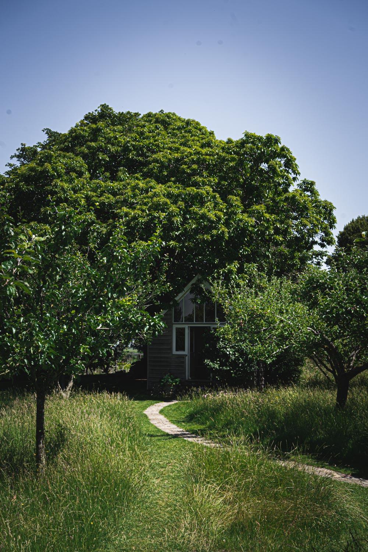 Monk's house-Virginia-Woolf-Writing-Lodge.jpg
