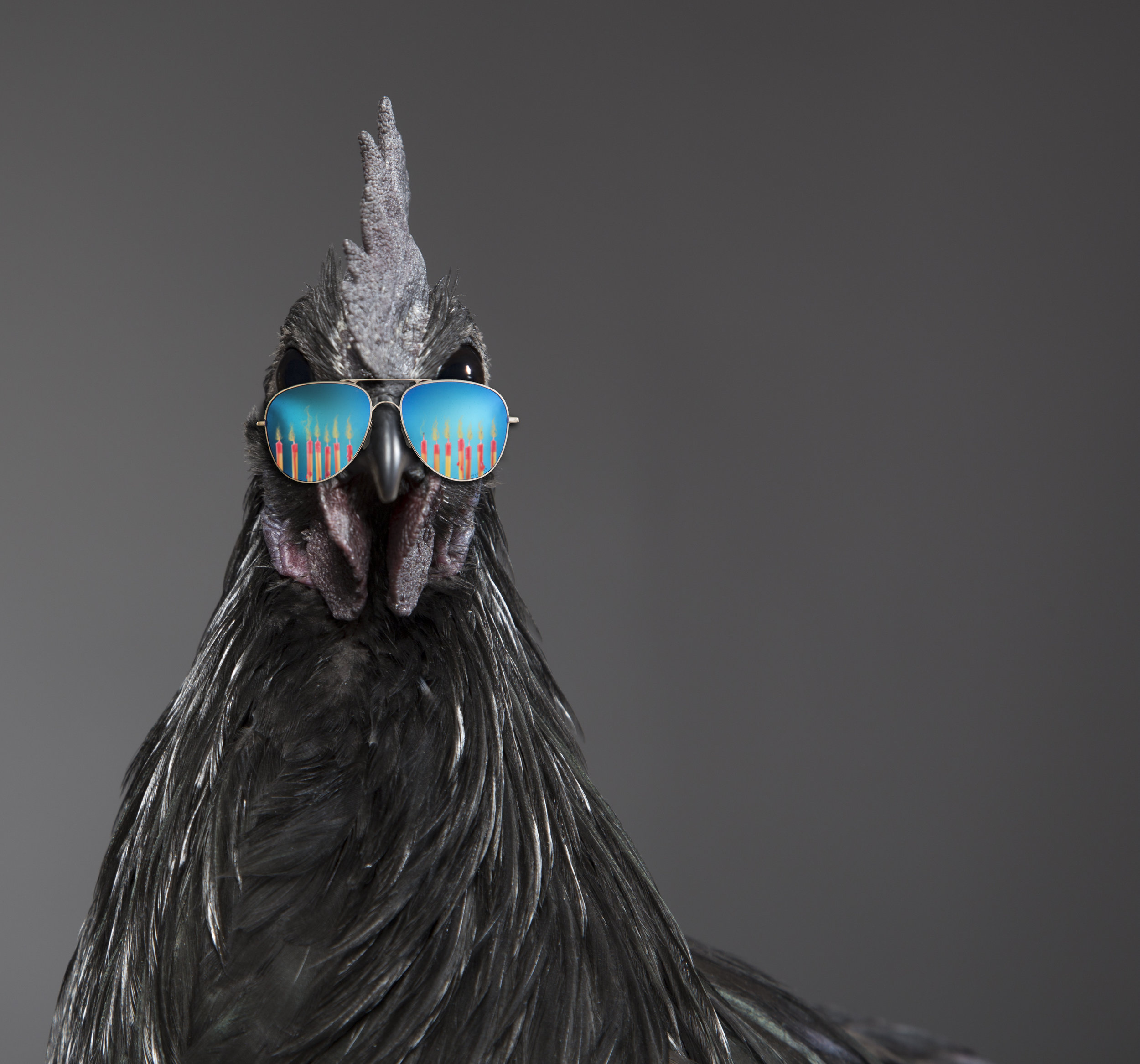 """Ashton MArtin - """"Happy Birthday Spring Chicken"""""""