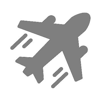 airplane-01 grey.jpg