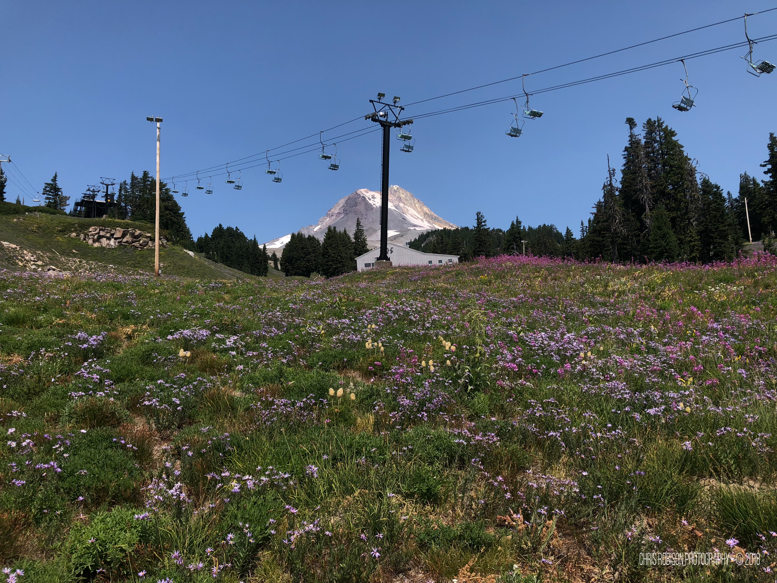 8-13-2018 Timberline Trail-104.jpg