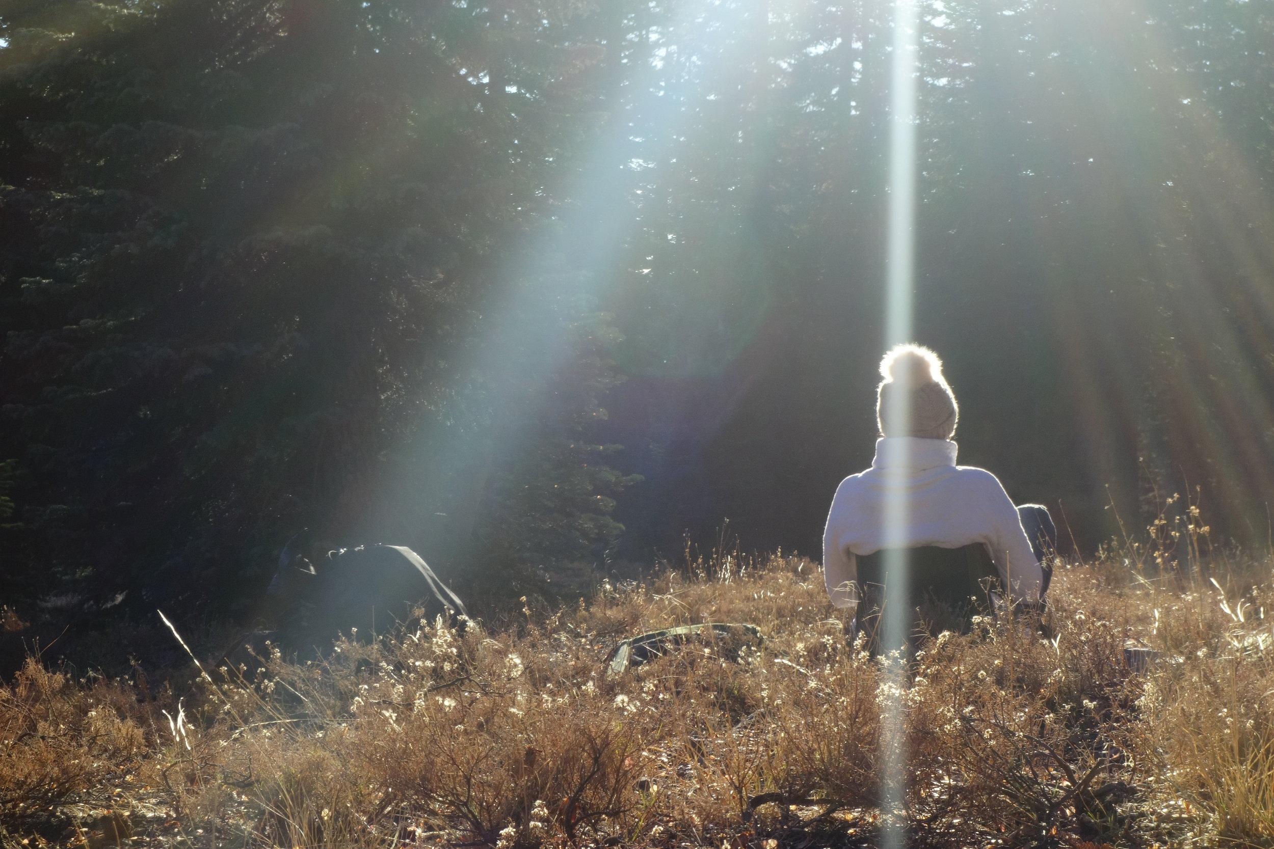 mount shasta spiritual tours