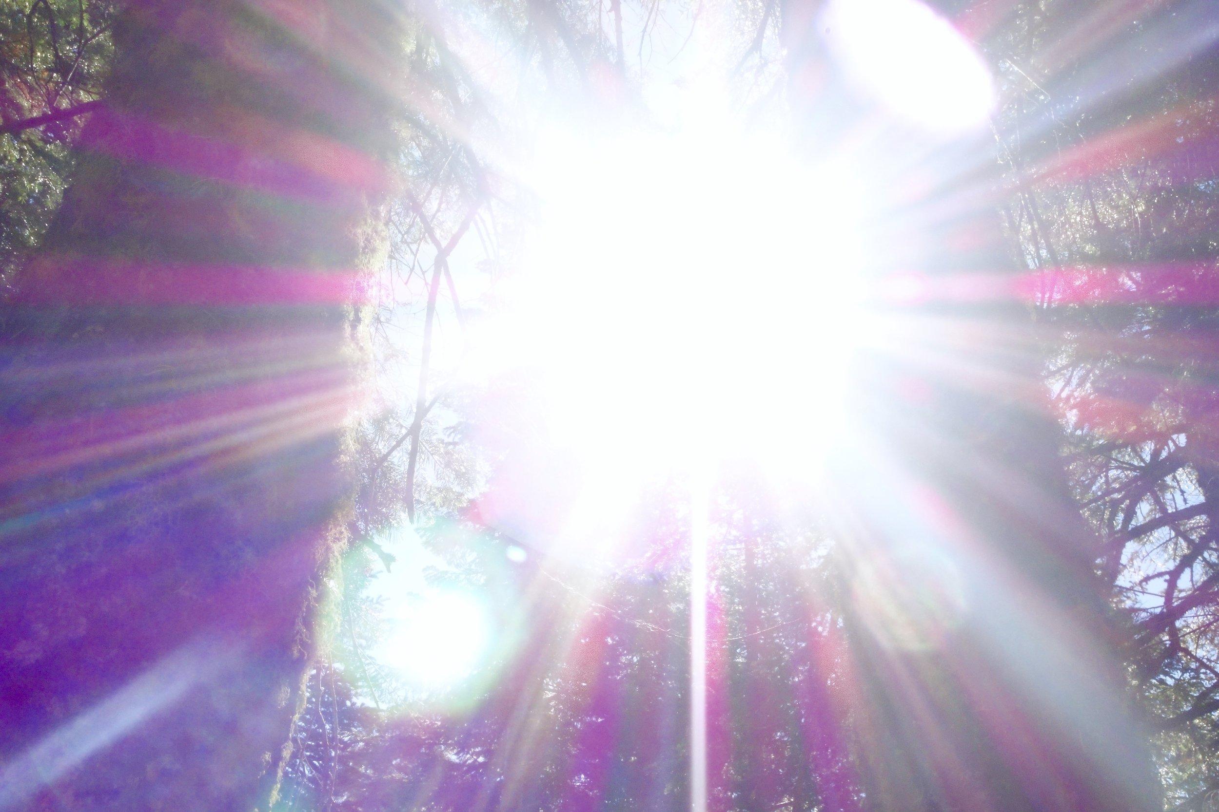 Mt Shasta Spiritual Tours