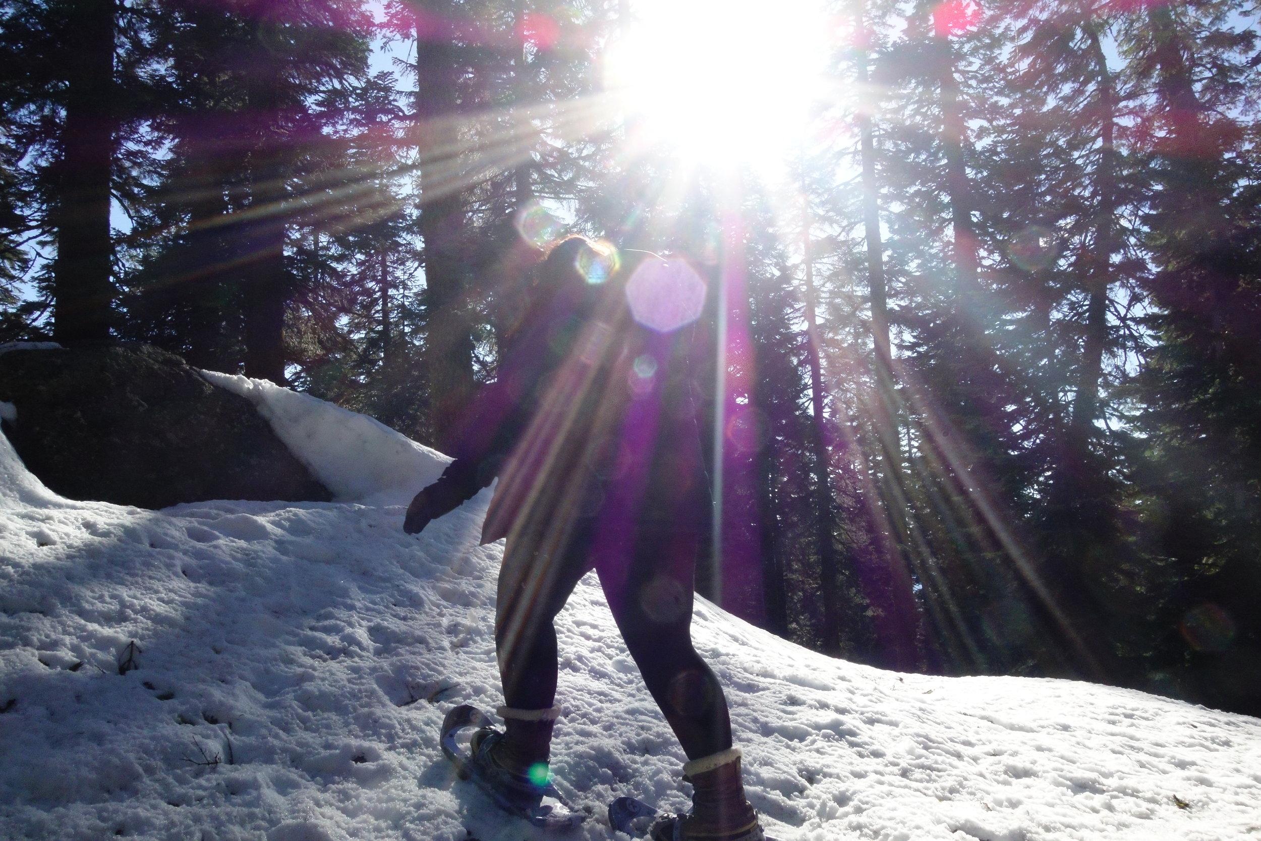 Mt. Shasta Spiritual Tours