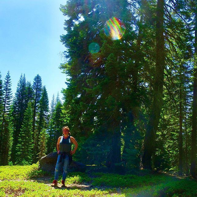 Beings of light on Mt Shasta // loving each other // #mtshasta #mountshasta #starseed #ascension #ascendedmasters #orbs #angels #spiritualretreat #spiritual #spiritualawakening #5d #fifthdimension #starseeddreamschool #mtshastaspiritualtours