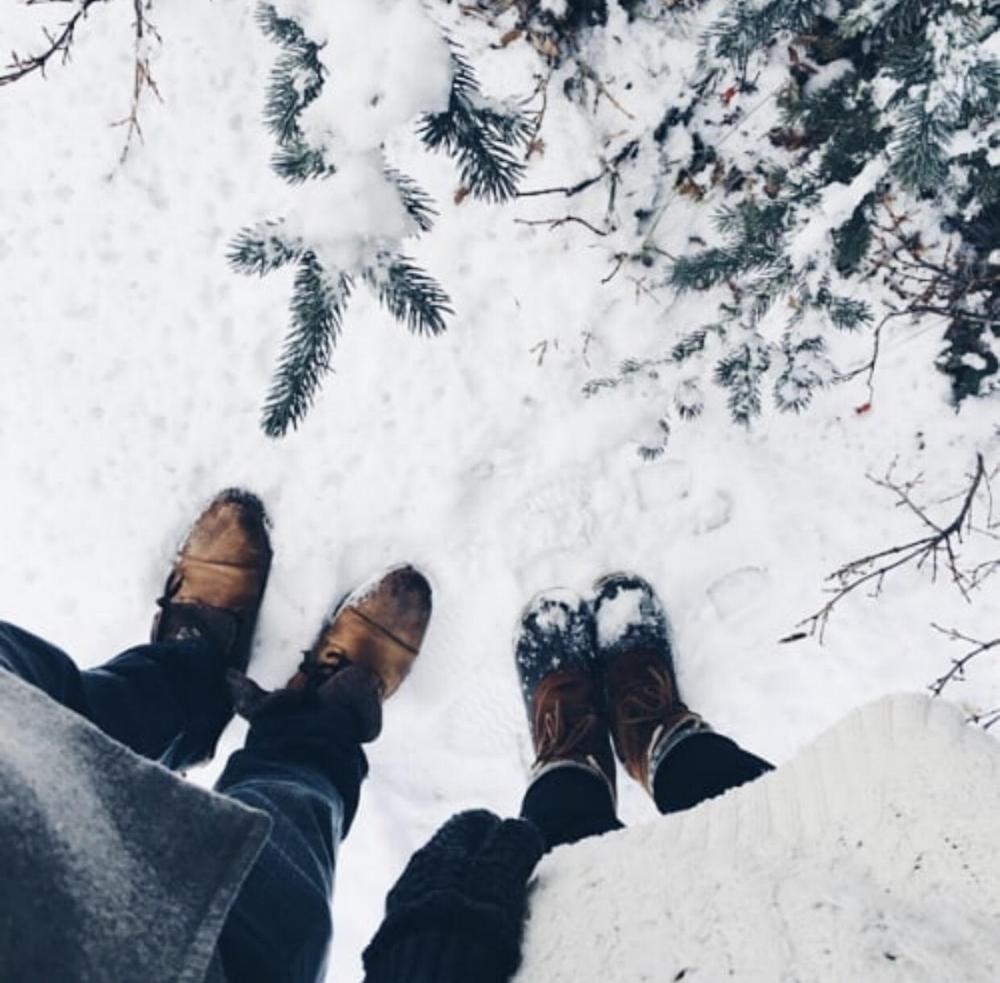 Source:  Winter's Delight