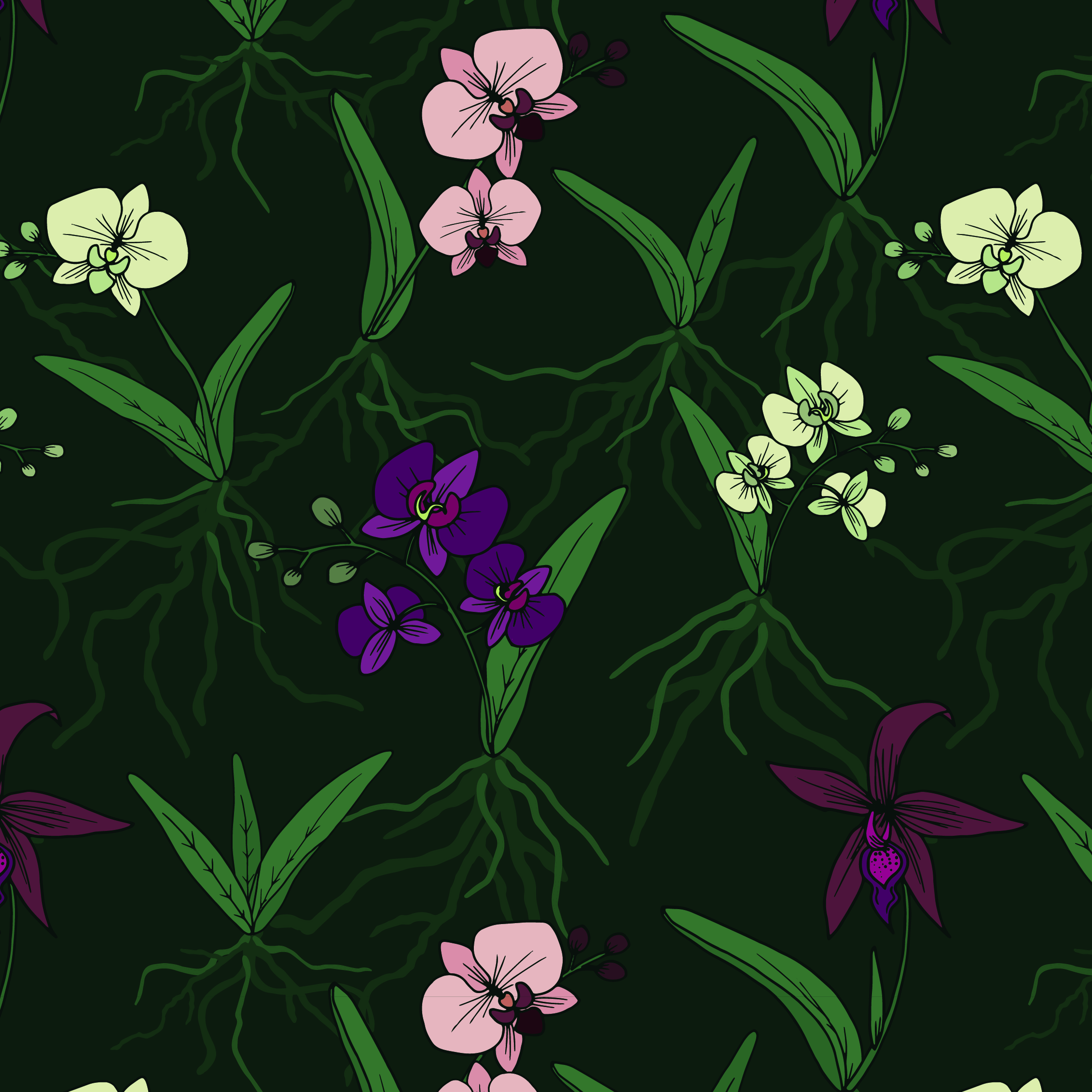 orchids-04.jpg