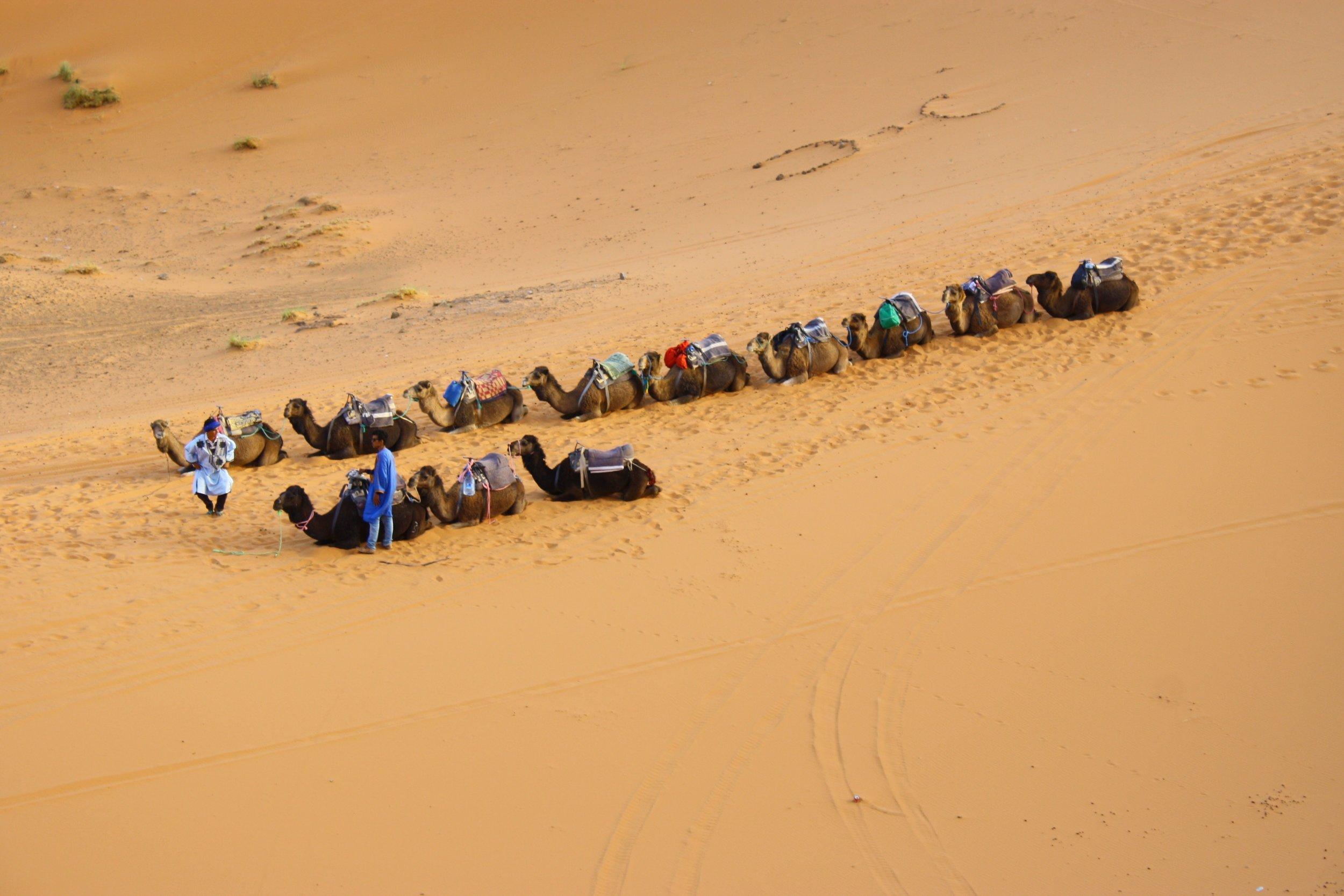 Morocco Photo by  Savvas Kalimeris  on  Unsplash