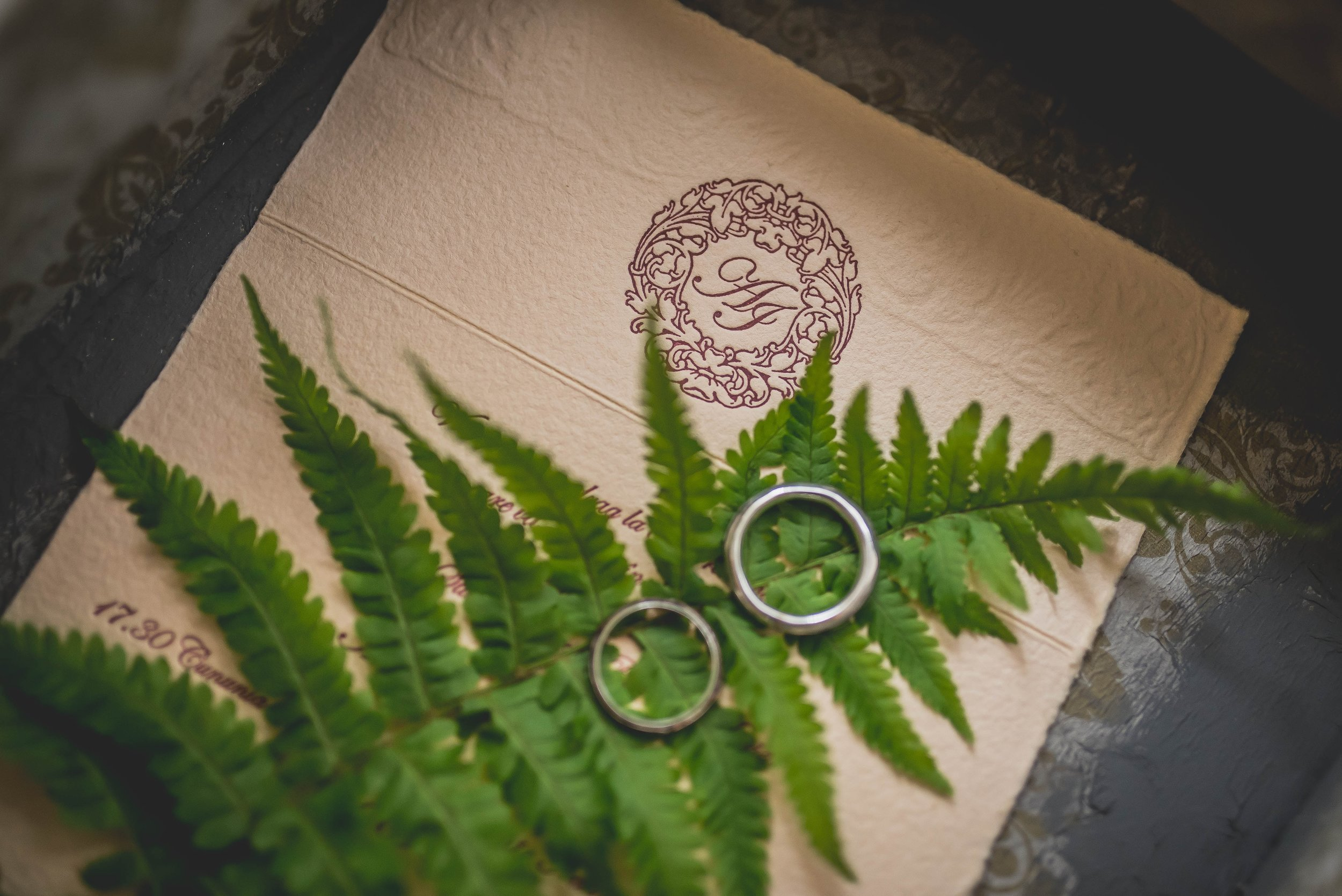 Wedding invite with rings and fern