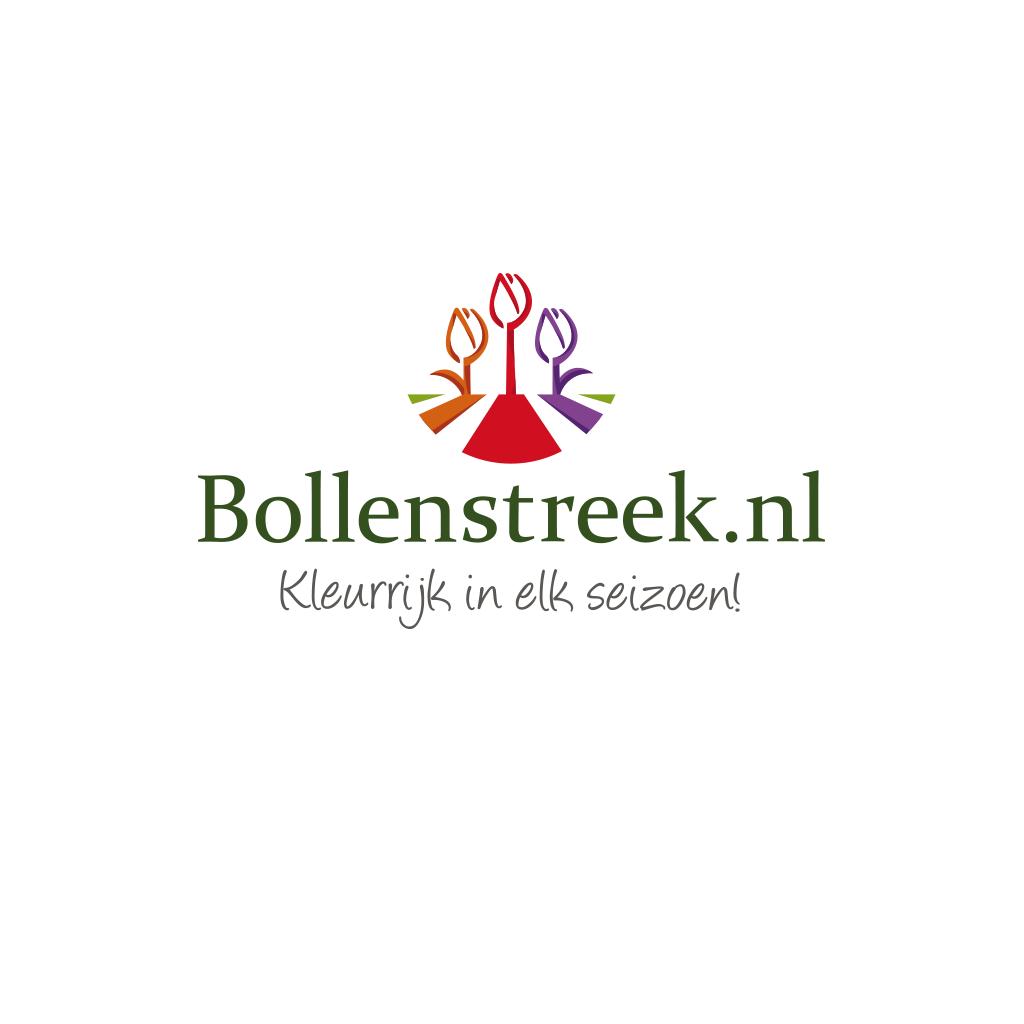 Logo ontwerp Bollenstreek.nl