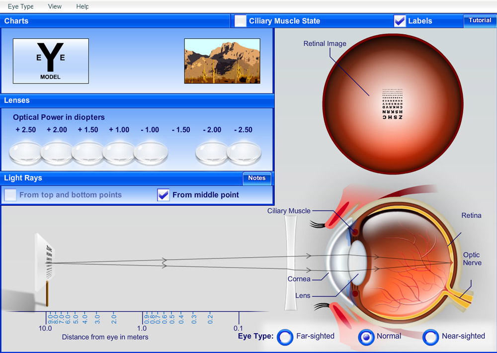 Science Software - Interactive Eye Explorer
