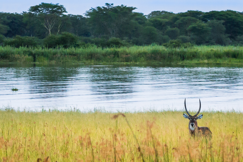 malawi-5.jpg