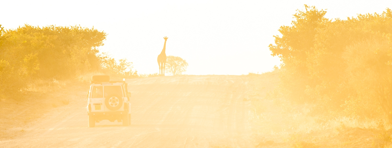 botswana-11.jpg