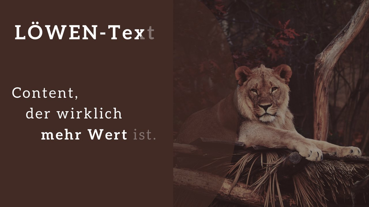 Texte schreiben lassen von LÖWEN-Text