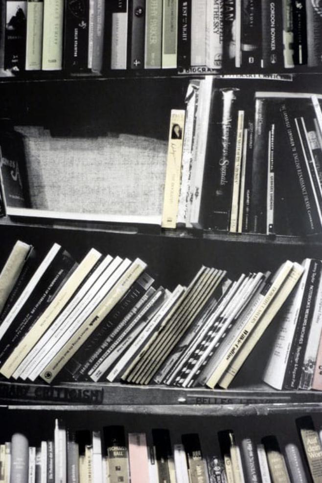 "Deborah Bowness' ""genuine fake bookshelf"" creates an illusion of a bookcase."