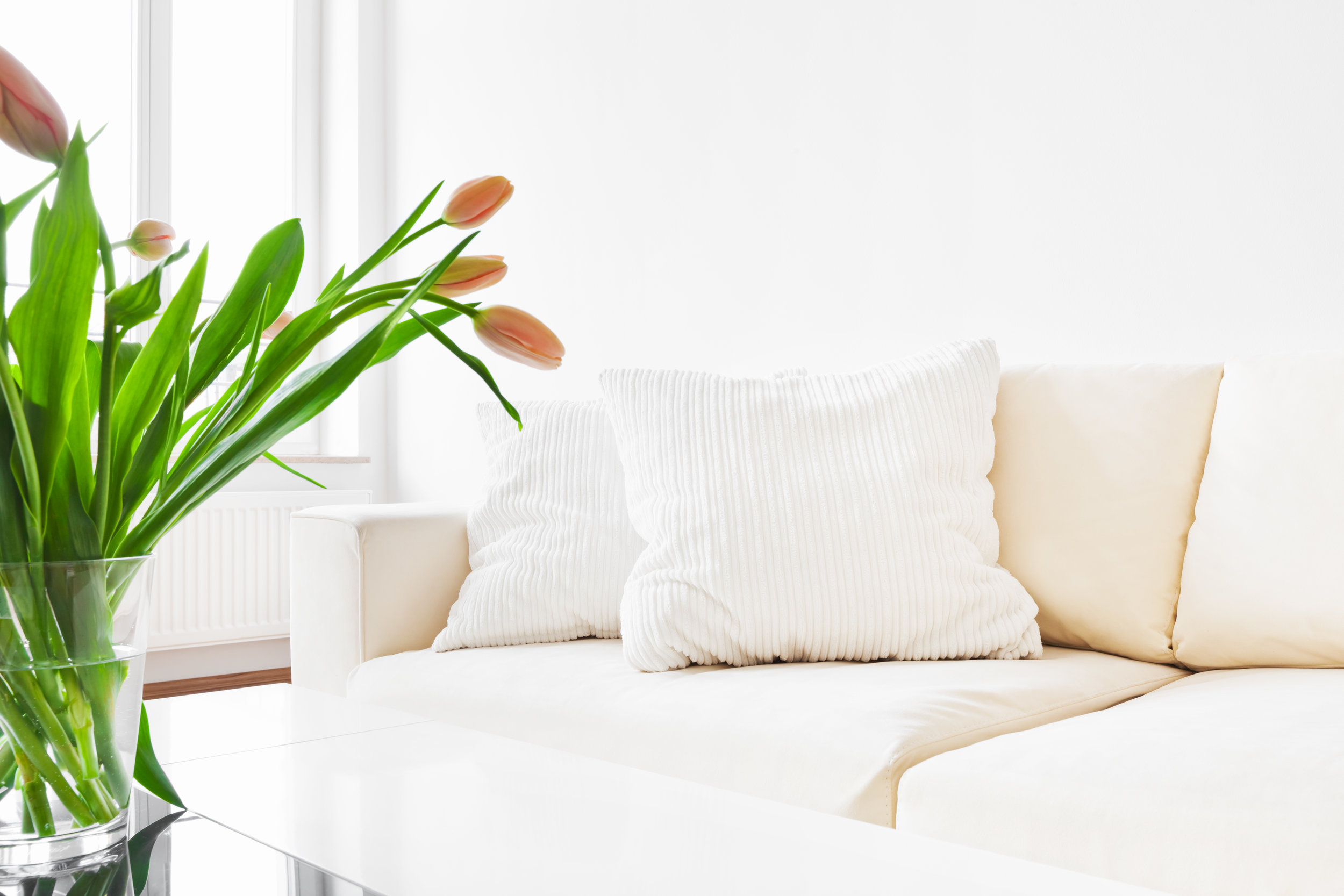 White Couch .jpg